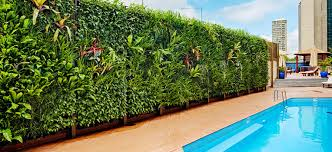 vertical garden friendly plants