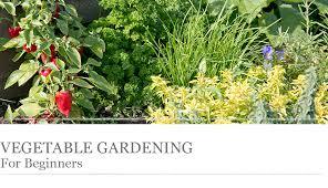 vegetable gardening for beginners houseplant living room design decor home living care tips