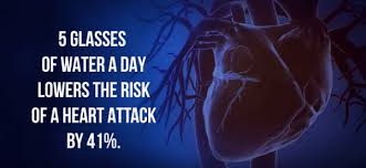 Image result for water helps HEART WORKS BETTER