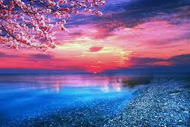 Beautiful Ocean Wallpaper ...