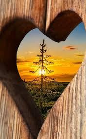 love es la palabra para todo