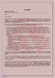 Resume Format For Automobile Industry Inspirational Sales