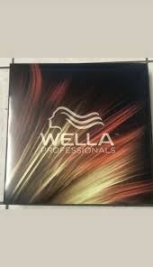 Wella Color Chart Book Wella Professionals Mega Large Swatch Book New Formulas Sealed