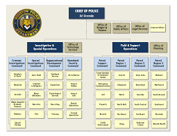 Houston Police Department Organizational Chart Police Management Term Paper Example Service