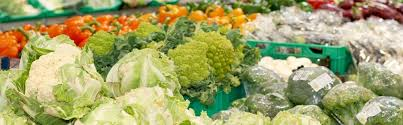 Bachelor voeding en gezondheid