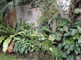 Small Picture I make this blog Garden landscaping pictures in sri lanka