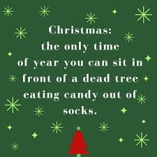 Funny Christmas Quotes Best Funny Christmas Quotes Worth Repeating Southern Living
