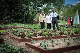 Michelle Obama Kitchen Garden Michelle Obamas White House Garden Will Grow On Huffpost