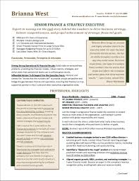 Executive Resume Resume Examples For Multiple Positions Same Company New Executive 71