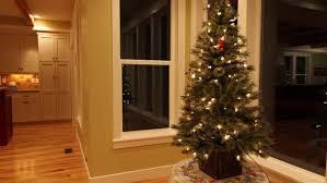 Indie Holiday Displays Christmas Trees  Boutique WindowChristmas Tree In Window