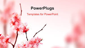 Spring Powerpoint 5000 Spring Powerpoint Templates W Spring Themed Backgrounds
