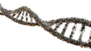 Resultado de imagen de biologia