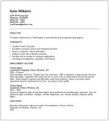 Best Good Resume Examples Images On Pinterest For Travel Experience