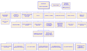 Dhs Org Chart Dhs Organizational Chart Download Scientific Diagram