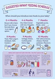 Detailed Information On Baby Food Infographic Presentation