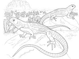 Small Picture Free Lizard Coloring Pages