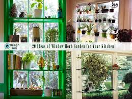 indoor window garden. to maximize your e use window shelving decorate them with fresh plants or accessories it will indoor garden n