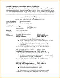 Example Of Federal Government Resumes For Infographic Federal Government Resume Guidelines Format Example