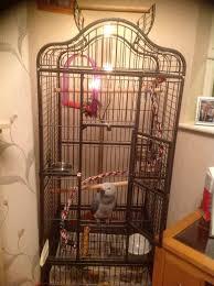image of corner aviary bird cage