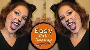 easy cat makeup look you