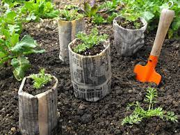 create newspaper pots for seed starting