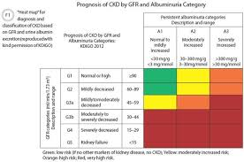 Ckd Classification Chart The New International Recommendations For Chronic Kidney