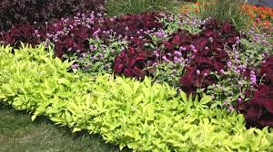 Small Picture Garden Landscape How to Design a Garden YouTube