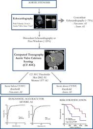 Agatston Score Chart Computed Tomography Aortic Valve Calcium Scoring In Patients