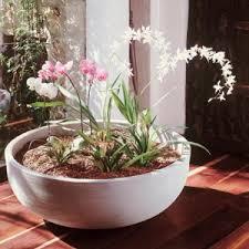 crescent garden planters. Round Orinoco Polyresin Planter Bowls Crescent Garden Planters