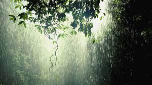 download Rain wallpaper ID:144934 1080p ...