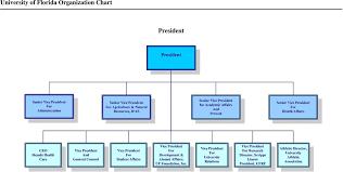 Uf Health Chart University Of Florida Organization Chart Pdf