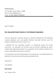 Cover Letter For Chartered Accountant Amit Cv Ca Inter With Cover Letter