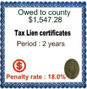 tax lien investing bill bronchick tax lien investing 101