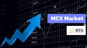 Here You Can Learn What Is Mcx Commodity Market And How To