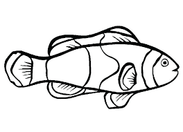 coloring pages of a rainbow best of coloring rainbow fish coloring page rainbow fish template to color funny fish coloring page free rainbow fish coloring