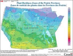 New Hardiness Zone Map For Canada Battlefords News Optimist