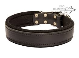 soft leather dog collar
