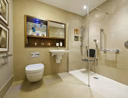 accessible bathrooms image of a roll in shower