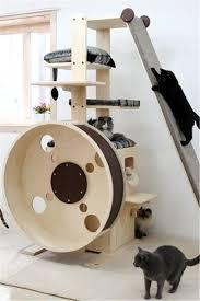 20 most popular cat tree ideas you will love