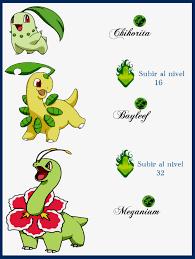 42 Genuine Quilava Evolution Chart