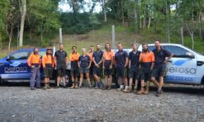 Small Picture Perosa Landscaping in Cairns