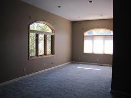 carpet paint. img_1056 carpet paint
