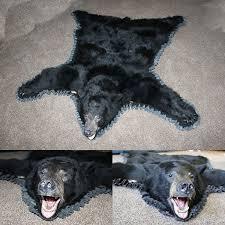 bear rug bear skin rug taxidermy