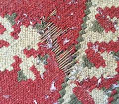 oriental rug moth treatment