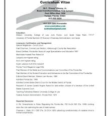 Good Summary For Resume Interesting Job Qualification Examples 40 Good Summary For Resume How Write
