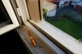 Undichte Fensterbank Wasser Dringt Ein Bei Schlagregen