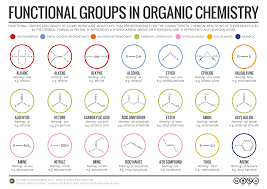 functional groups chart functional groups in organic chemistry infographic chemistry
