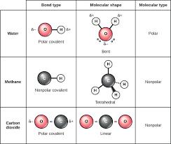 Ionic Vs Covalent Bonds Venn Diagram Ionic Compound Vs Covalent Compound Ionic Bonds Ionic