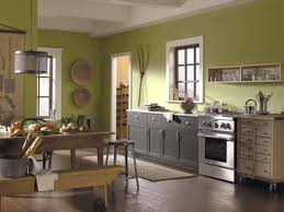 For Kitchens Incridible Best Colors For Kitchen Cabinets On Best Colors For