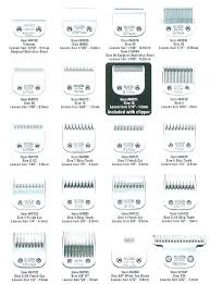 Dog Haircut Chart Andis Dog Groomer Clippers Blades Grooming Australia
